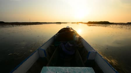 genuíno : long boat tours in nature of national park