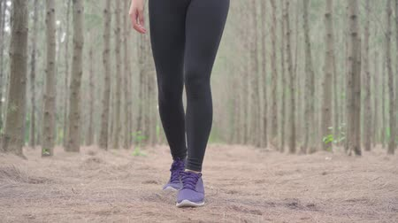 cadarço : Shoelace of woman sporty in the forest after runner cardio exercise workout, female happy enjoying freedom active healthy lifestyle stretching on summer