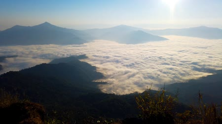 chiang rai : Scenic Landscape view with Soft light in morning beautiful sunrise, cloudy and foggy sea of wave fog look like around the mountain over ciry at Phu chi fa,Thailand Stock Footage