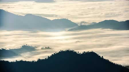 chi : Scenic Landscape view with Soft light in morning beautiful sunrise, cloudy and foggy sea of wave fog look like around the mountain over ciry at Phu chi fa,Thailand Stock Footage