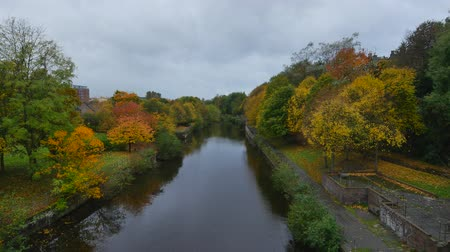 yaya köprüsü : 4K Water of Leith during Autumn in Leith, north Edinburgh, Scotland, United Kingdom
