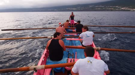 azorean : Traditional Whaling Boat Training near Lajes on Pico Island, Azores, Portugal Stock Footage