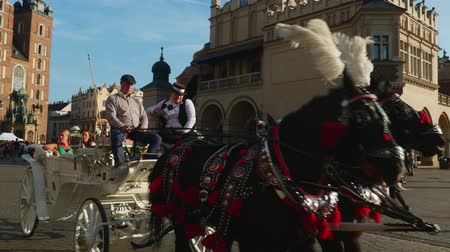 marys : Poland, Lesser Poland Voivodeship, Cracow, Main Market Square, Horse Carriage with St. Mary Basilica in the background Stock Footage