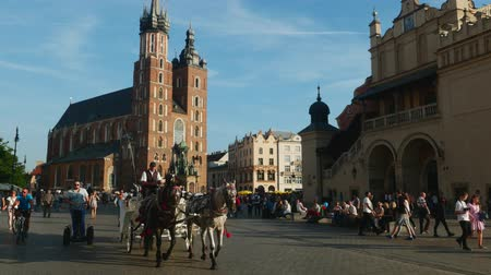 sukiennice : Poland, Lesser Poland Voivodeship, Cracow, Main Market Square, Horse Carriage with St. Mary Basilica in the background Stock Footage