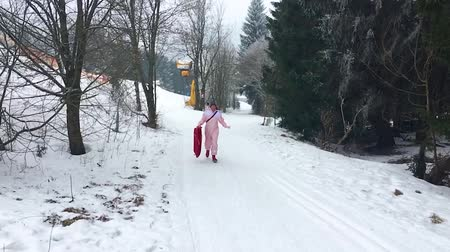 luge : Adult person running up a snow hill with a sleigh, popular toys for adults and kids, Winter sports and fun Stock Footage