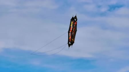 hand crafted : professional sports kite flying in the air, recreational sports during the summer season for adults and kids