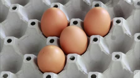 five to none eggs gone out of a carton
