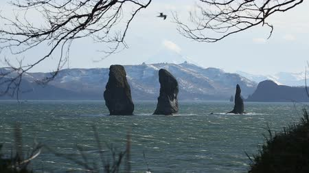 poloostrov : Beautiful Kamchatka Peninsula seascape: view of rocky islands in the sea - Three Brothers Rocks in Avacha Bay (Avachinskaya Bay) in Pacific Ocean. Kamchatka Region, Russian Far East, Eurasia.