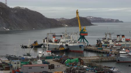 navy pier : AVACHA BAY, PETROPAVLOVSK KAMCHATSKY CITY, KAMCHATKA PENINSULA, RUSSIA - 17 MAY, 2018: Two harbor tugboats pushing large freezing fishing trawlers helping to enter seaport and to anchor at pier. Time lapse.