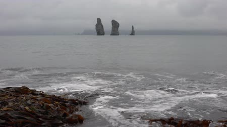 jarmuż : Stunning Kamchatka Peninsula seascape: rocky islands in the sea - Three Brothers Rocks in Pacific Ocean on a cloudy day beach made of black volcanic sand and natural sea kale thrown ashore. Time lapse.