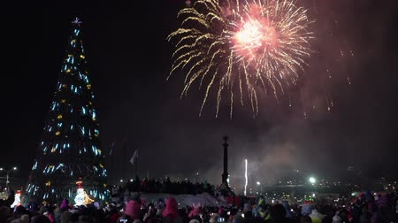 night scape : Celebration fireworks in honor of Happy New Year. Crowd of people watching and take pictures fireworks in night sky near celebration Christmas tree in Petropavlovsk-Kamchatsky City. Russian Far East Stock Footage