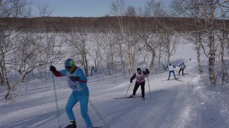 documentary : KAMCHATKA PENINSULA, RUSSIAN FAR EAST - FEBRUARY 9, 2019: Group of skiers running along ski track in winter forest on sunny day. All-Russia mass ski race - Ski Track of Russian Federation.