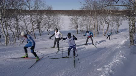uzak : KAMCHATKA PENINSULA, RUSSIAN FAR EAST - FEBRUARY 9, 2019: All-Russia Mass Ski Race - Ski Track of Russian Federation. Group of skiers running along ski track in winter forest on sunny day.