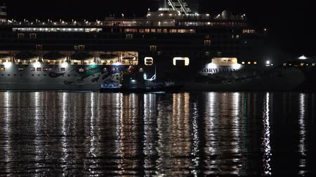 daleko : KAMCHATKA PENINSULA, RUSSIAN FAR EAST - 10 MAY, 2019: Dark night view of stately Expedition Passenger Cruise Liner Norwegian Jewel (NCL) sailing in Pacific Ocean. Porthole lights reflected in sea. Dostupné videozáznamy