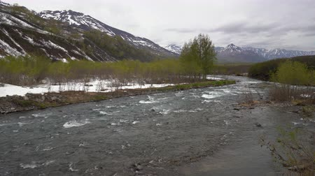 russian far east : Early spring landscape of Kamchatka Peninsula: rough cold mountain river Paratunka River, just flowering trees and snow along river banks on cloudy weather. Kamchatka Region, Russian Far East, Eurasia