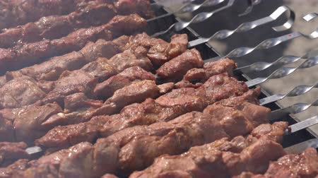 braciere : Tasty juicy pork barbecue cooking on metal skewers on charcoal outdoors grill with fragrant fire smoke. Cooking during summer picnic. Close-up view, selective focus on pieces of delicious roast meat Filmati Stock