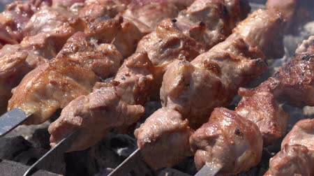 appetizing shish kebab : Appetizing juicy pork barbecue cooking on metal skewers on outdoors charcoal grill with fragrant fire smoke. Cooking during summer picnic. Close-up, selective focus on pieces of delicious roast meat Stock Footage