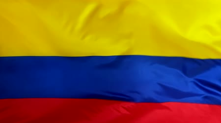 Flag of Colombia waving in the wind close-up. The wind is blowing from right to left. Background for news, movies and more. Wideo