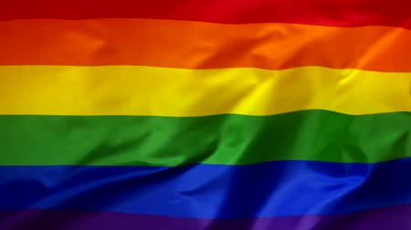 LGBT flag waving in the wind close-up. Colorful rainbow flag, LGBT pride flag, flag of lesbians and gays. The wind is blowing from right to left. Wideo