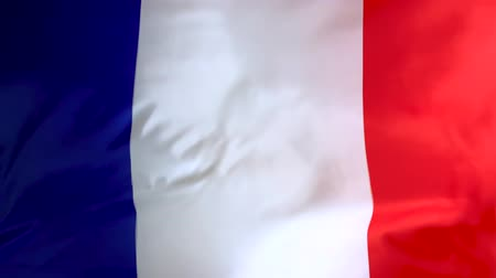 Flag of France waving in the wind close-up. The wind is blowing from right to left. Background for news, movies and more.
