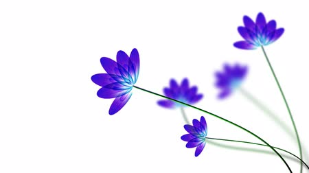 eleganckie : Transparent blue and white background swaying flowers