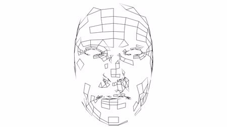 id : Digital lines create face shape, digital concept