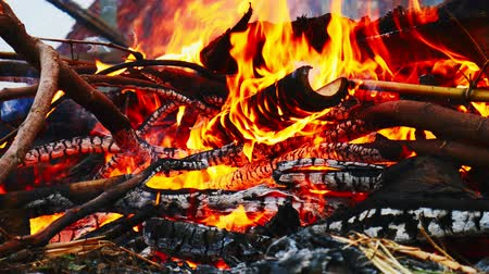 legna da ardere : Close-up of burning fire flame with burnt firewood.
