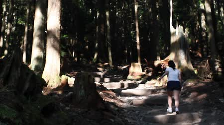 őrlés : VANCOUVER, BRITISH COLUMBIA,CANADA - CIRCA May 2012 :lady walks the grouse grind - pan up to trees