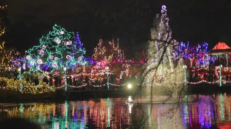kanada : cinematic - Christmas - Vandusen festival of lights