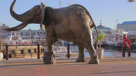 pretoria : CIRCA June 2013 - NELSPRUIT, KRUGER NATIONAL PARK ,SOUTH AFRICA - a high to low pan of an elephant statue at the captetown harbour