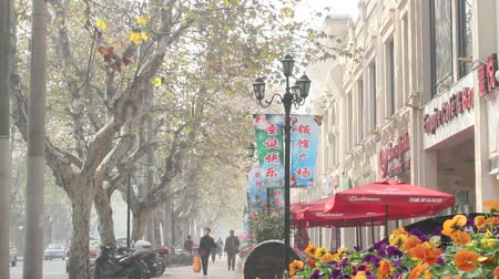şarkı : busy tree lined street in the french concession Stok Video