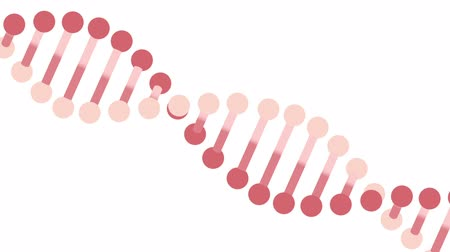 replication : DNA molecule animation seamless loop from 8: 08s. Great for background. You can replace the background using Luma Matte