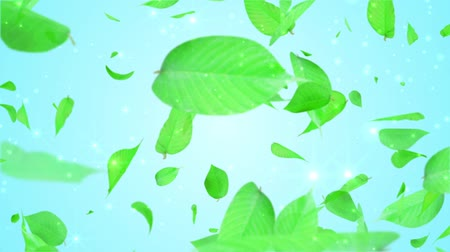 reen : fresh green leaves exploding, light blue background