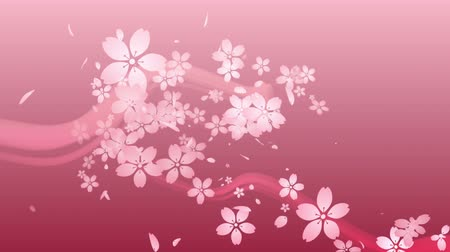 Cherry blossoms are blooming along the trajectory, in pink background 1 Vídeos