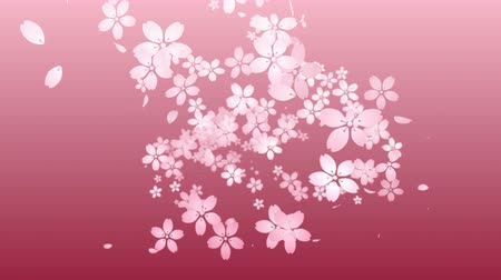 Cherry blossoms are blooming along the trajectory, in pink background 3
