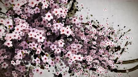 admission : cherry blossom and ink paint strokes paper texture background