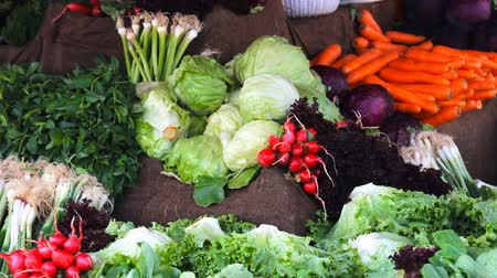 üretmek : Fresh healthy bio fennel and carrots on Turkish farmer agricultural market