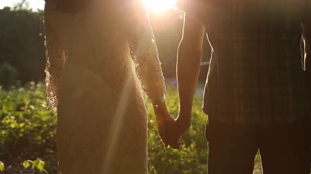 holding : Young couple in love walking in the autumn park holding hands looking in the sunset