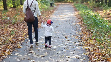 парк : Mom and baby daughter for a walk in the autumn park Стоковые видеозаписи