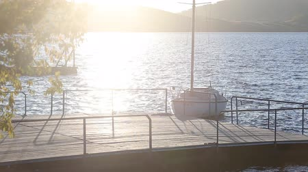 hawser : Sailboats in a quiet harbor on ocean Stock Footage
