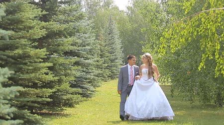 weddings : Young wedding couple walking together at park. Stock Footage