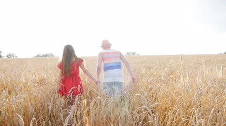 drží se za ruce : Happy young couple walking together through wheat field