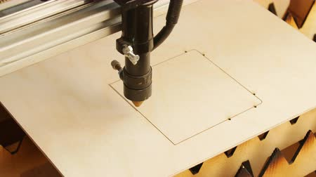 laser engraving : Laser machine cutting wood and plywood