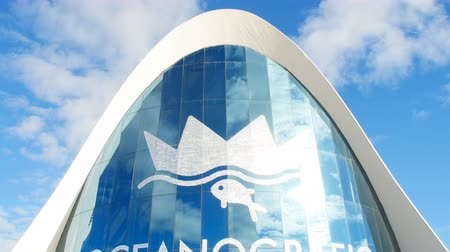 lógica : VALENCIA, SPAIN - January 10, 2018. The building of the oceanographic complex in Valencia, Spain Stock Footage