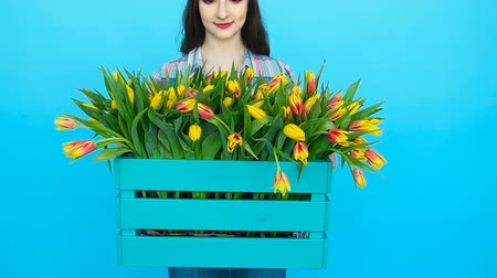 virágárus : Young woman holding a box with tulips on a blue background Stock mozgókép