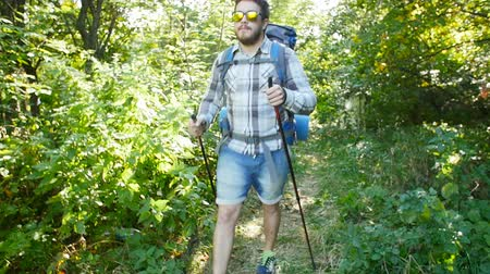 Concept of hiking and tourism. A man is walking along a summer forest Stock mozgókép