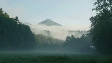 füstös : Early morning fog hangs over Cataloochee Valley in Great Smoky Mountains National Park.