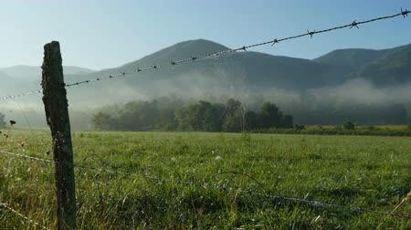 füstös : A spider web hangs from a barbed-wire fence as early morning fog still hangs over Cades Cove in Great Smoky Mountains National Park.