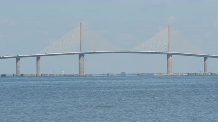 tampa bay : Traffic crosses the Sunshine Skyway Bridge over Tampa Bay as mullet jump out of the water.