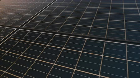 панель : Solar panel plant, ecology power Стоковые видеозаписи